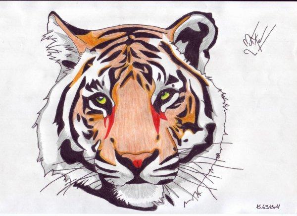 Blog de mikaderoubaix libert battons nous pour elle ensemble - Dessin de tigre facile ...